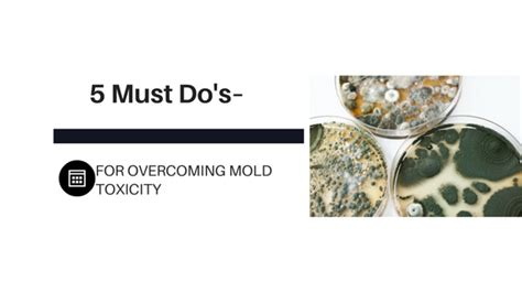 5 Must Dos by 5 Must Do S For Overcoming Mold Toxicity Food Function