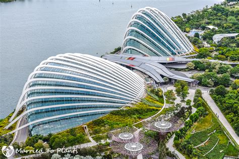 The Bay by Tour Of Gardens By The Bay In Singapore