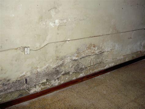 umidit 224 nei muri interni 28 images combattere l umidit