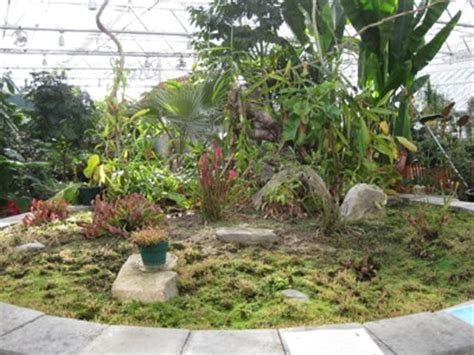 Roger Williams Botanical Gardens Roger Williams Park Botanical Center Providence Ri Carnivorous Plant Localities On