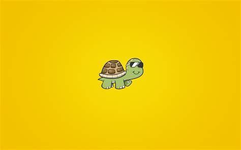 wallpaper cartoon turtle turtle background walldevil