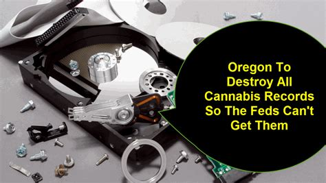 Oregon Records Oregon To Destroy All Cannabis Records So The Feds Can T Get Them