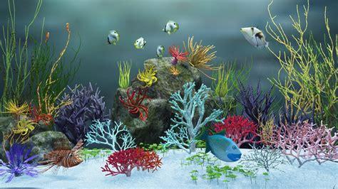Home Aquarium by 1366x768 Aquarium View Ver 2 Desktop Pc And Mac Wallpaper