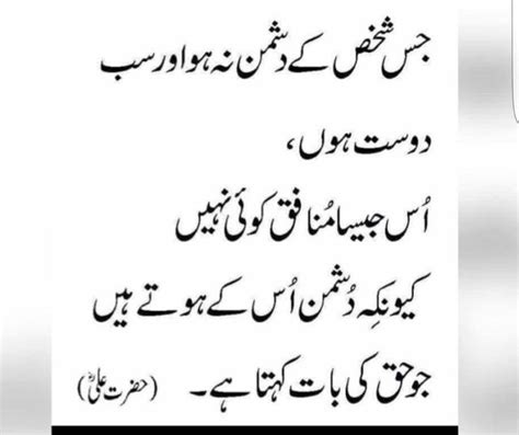 theme party meaning in urdu 176 best aqwal hazrat ali ra images on pinterest allah