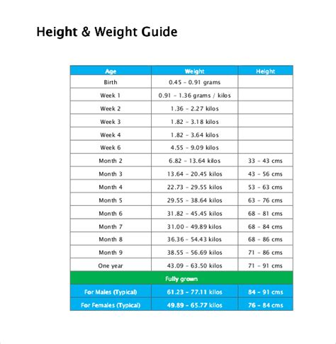 puppy weight chart template height weight chart templates 12 free excel pdf documents free