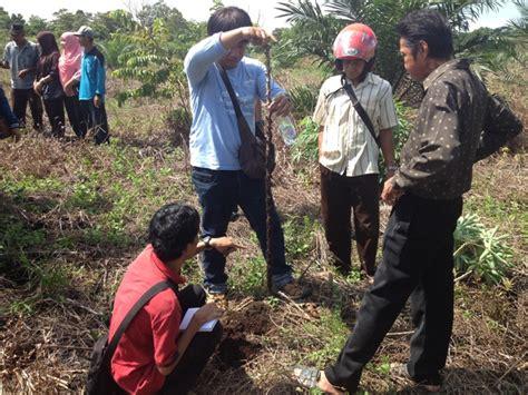 pendirian yayasan di indonesia ternyata agroforestri memiliki peranan penting dalam