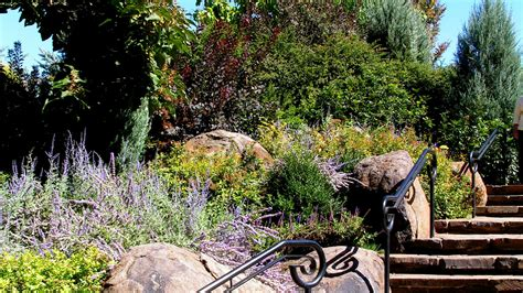 sustainable landscaping professional and continuing education