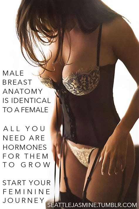 feminization male to female body transitions female hormones 16 best sissy boy images on pinterest tg captions sissy