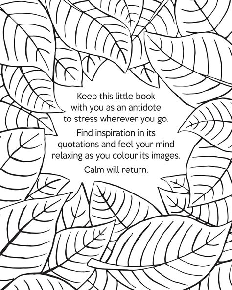 coloring pages for adults calming coloring pages relaxing