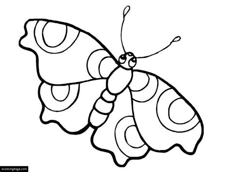 Big Eyed Butterfly Colouring Page For Kids Printable Big Printable Coloring Pages