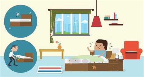 How To Keep Bugs Out Of Your Room by How To Keep Bed Bugs You Request For Another Room If