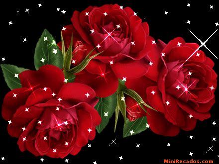 imagenes de flores en movimiento flores con movimiento flores con movimiento para perfil