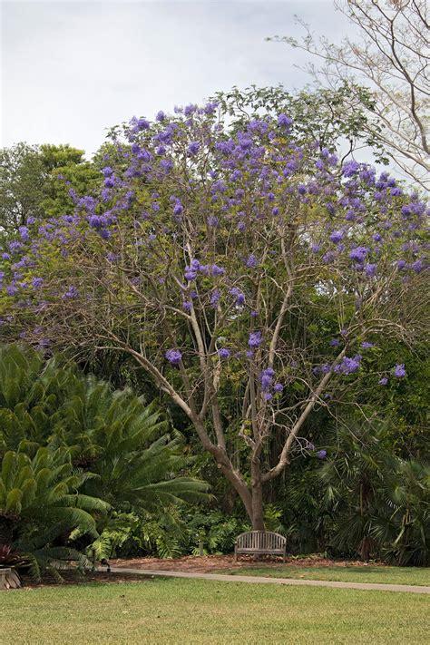 Fairchild Botanical Garden Fairchild Tropical Botanic Garden Crop Farm