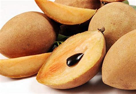 Bantal Cinta Buah Segar Gambar Jeruk gambar belajar mewarnai gambar buah buahan obebiku tweet