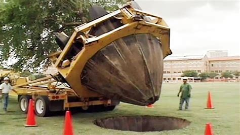 awesome machine moving and transplanting trees with a