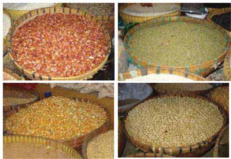 Tepung Singkong Pakan Ternak mitra tohaga farm mengenal bahan pakan alternatif ternak itik