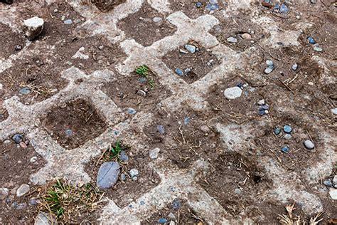 Was Kostet Rasensamen by Rasengittersteine Arten Verwendung Und Preise