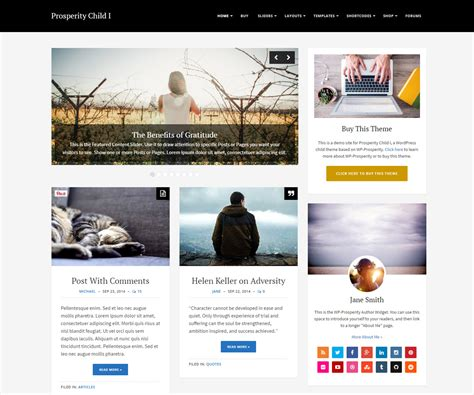 list themes for wordpress premium wordpress themes wp prosperity