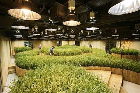 Underground Patio by Pasona O2 Underground Farming Treehugger