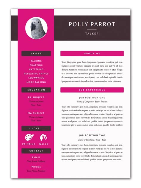 Resume Cv Indesign Indesign Free Templates