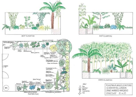 Mediterranean Home Designs by Example Planting Plans