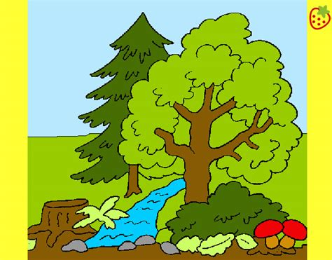 imagenes faciles para dibujar de la naturaleza dibujo de bosque r 237 o pintado por mmmakylu en dibujos net