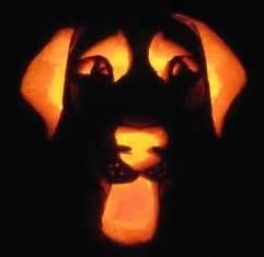 golden retriever pumpkin stencil labrador retriever pumpkin stencil it s not because i don t actually