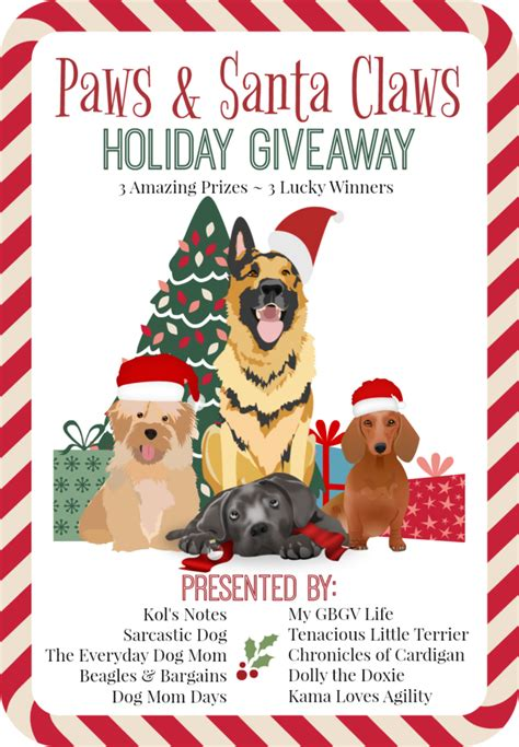 Pet Giveaway - paws santa claws holiday giveaway spoil your pets