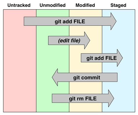 github darth10 git info introduction to git git for science