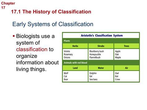 section 18 2 modern evolutionary classification worksheet answers section 18 2 modern evolutionary classification worksheet