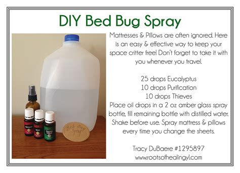 homemade bed bug repellent diy bed bug spray with essential oils oils pinterest