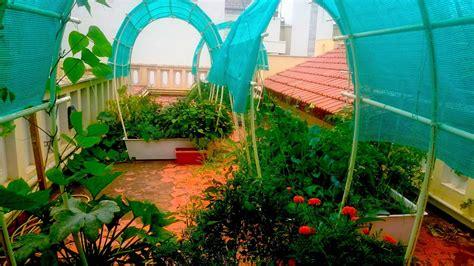 Smart Garden York Arch Smart Garden Single Complete 24 Sq Ft Self Watering