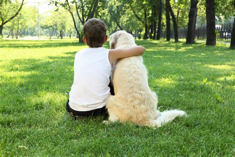 bonding with puppy tips archive