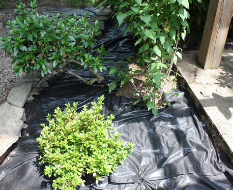 using barrier cloth information about garden
