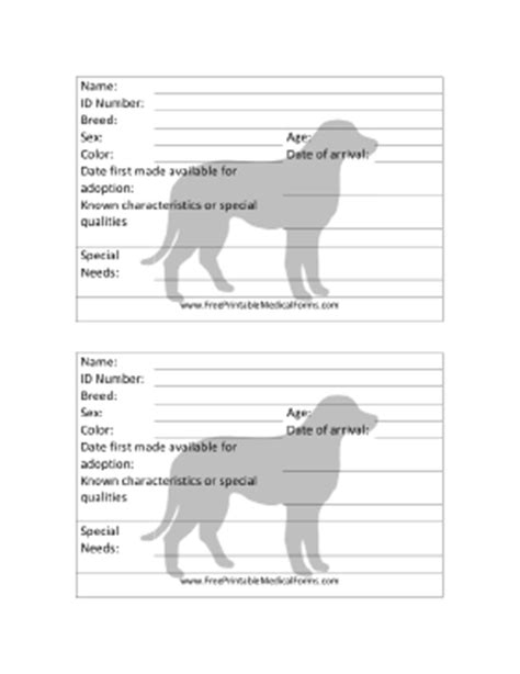 animal shelter cage card template printable adoption 4x6 cage card