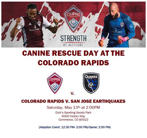 pug rescue colorado springs colorado rapids canine rescue day colorado pug rescue