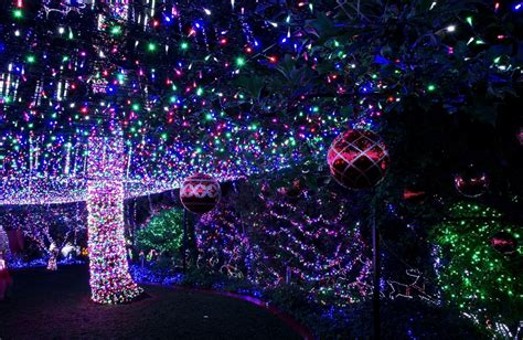 download live christmas lights wallpaper gallery