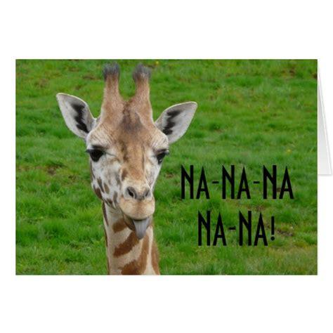 imagenes graciosas jirafas fotos de jirafas chistosas imagui