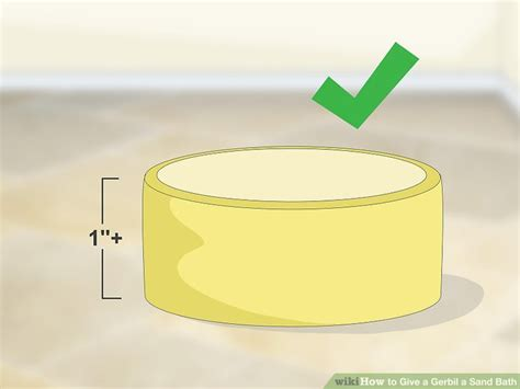 sanding a bathtub how to give a gerbil a sand bath 8 steps with pictures