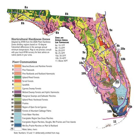 gardening zones florida 25 best ideas about south florida map on