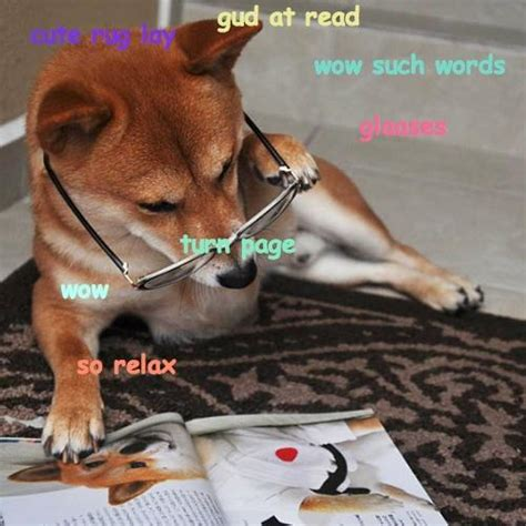 Doge Know Your Meme - image 582646 doge know your meme