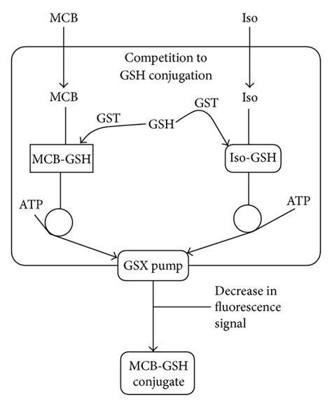 circuit diagram of mcb circuit and schematics diagram