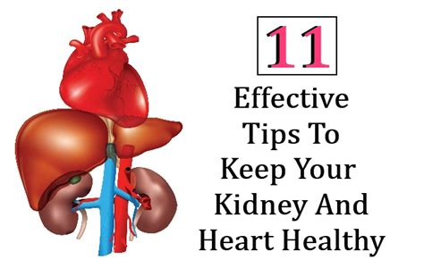 good tips on how to keep your house clean trusper 11 effective tips to keep your kidney and heart healthy