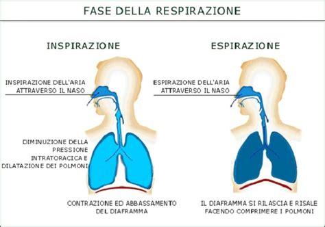 respirazione interna ed esterna come respirare bene la respirazione diaframmatica