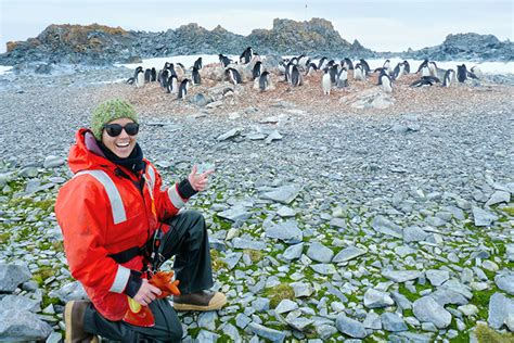 climate change could make fish shrink by up to 30 daily climate change may shift or shrink penguin habitat image
