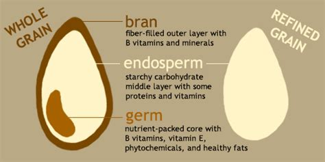 vitamin e whole grains the whole grain is greater than the sum of its parts