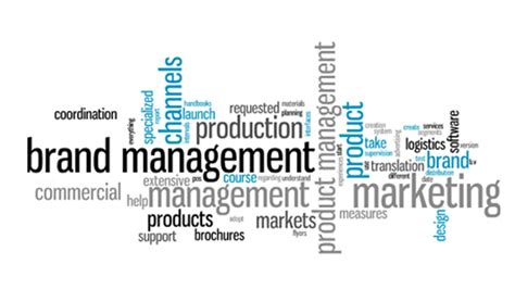 Executive Mba In Brand Management by International Brand Management Limited Wowkeyword