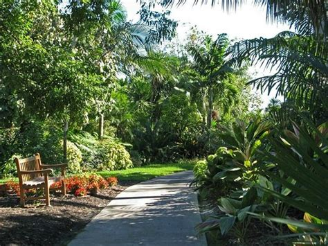 Mounts Botanical Garden What A Lovely Pond Picture Of Mounts Botanical Garden West Palm Tripadvisor
