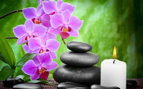 imagenes zen zen full hd wallpaper and background image 2880x1800