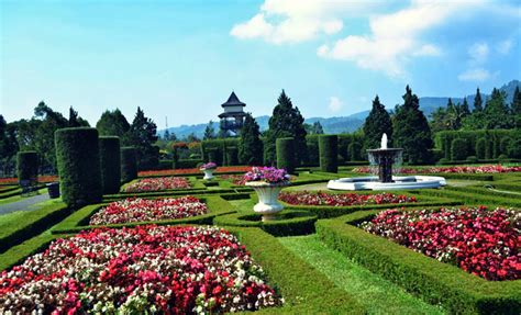 Harga Masuk Taman Anggrek tiket masuk taman bunga nusantara tempat wisata keluarga